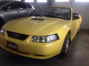 2002 Ford Mustang Toute équipe Autre