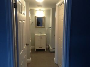 One bedroom apartment lakewood heights