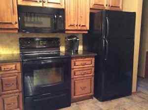 Black fridge and stove