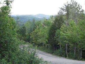 Many land for sale ( financing )