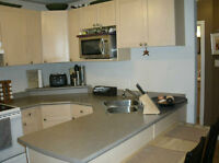 Beautiful, downtown, 1 bedroom condo - Available June 1
