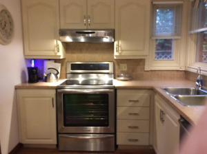 Used Kitchen Cabinets Kijiji In Chatham Kent Buy Sell Save