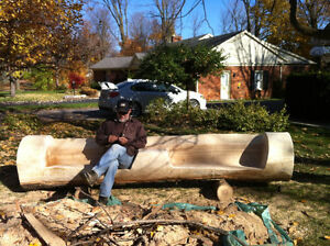 Tree removal and log milling Kitchener / Waterloo Kitchener Area image 7