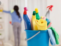 Professional Residential  Cleaning Service