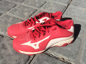 Mizuno Molded Baseball Cleat Shoe