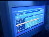 Sony Trinitron TV Digital KD28L10U with remote and stand - integrated Freeview