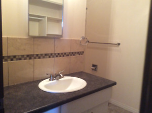 Old  Strathcona xLG  1 bed  Suite for Professional Adult