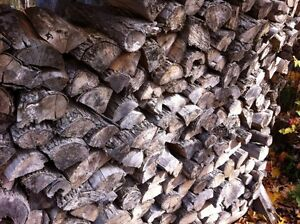 Hardwood firewood for CHEAP!! stalk up for next season