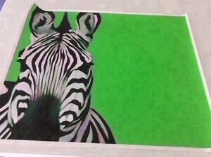 zebra canvas print only. Not framed. Mornington Clarence Area Preview