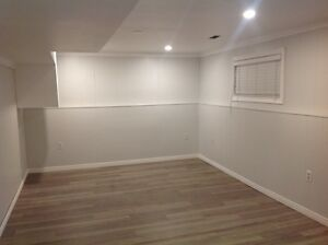 Brand New, Immaculate 1 Bedroom Basement