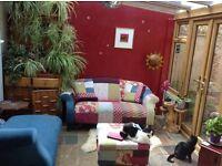 Large attic room in cosy, quiet house in Shirehampton