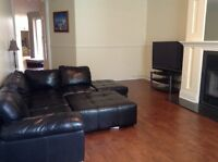5 1/2 apartment best location in plateau