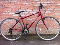 TRAX ADULTS BICYCLE