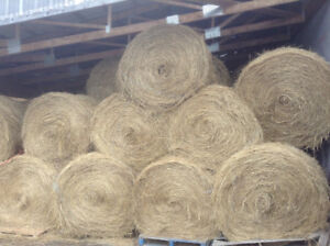 FREE HAY > Rounds Bales > FREE HAY