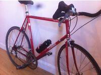 Ocshner 1981 Road Bike (58cm)