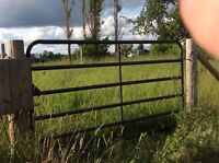 Horse Paddock for sale!