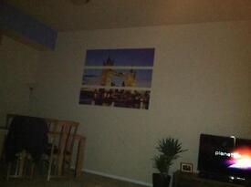 London Tower Bridge Canvas Picture - bargain at £10