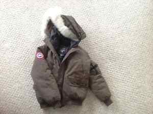 Brown Canada Goose Winter Coat