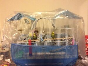 Selling these 4 Parakeets with Cage/all accessories and Food