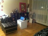 11/2 to sublet downtown Montreal