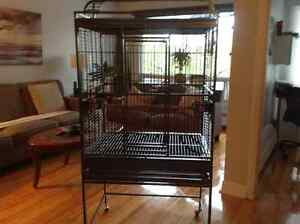 Cage perroquet marque kings cages