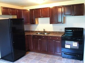2 Bedroom Renovated Basement Suite for Rent in Forest Grove