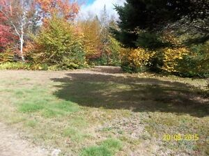 Cool Country Setting Land For Sale
