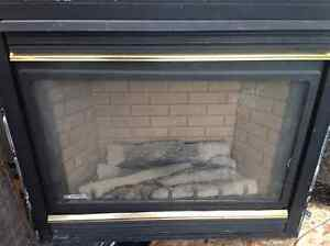 Gas fire place   FREE delivery, cleaning my storage and MUST GO!