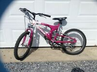 Girl's Bicycle 20""