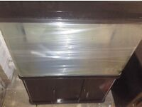 Walnut front curved edge 250 litre fish tank and cabinet