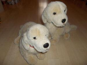 2 toutous chiens Labrador