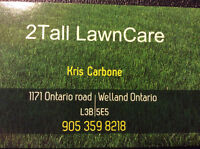 Professional Lawn care and maintenance ( Free Quotes!)