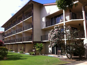 Ocean view condo in Kauai, Hawaii $1070.00 U.S.