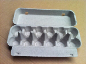 Wanted Egg Cartons