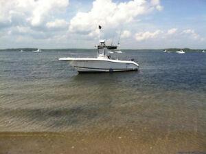 BEAUTIFUL SEASWIRL STRIPER 2301CC