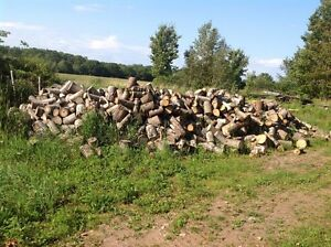 Dry blocked firewood for sale.