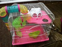Gerbil Cage used