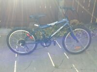 Childs Supercycle