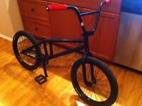 Specialized P.20 custom