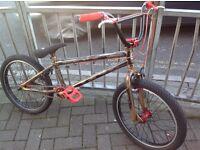 Custom Mongoose BMX