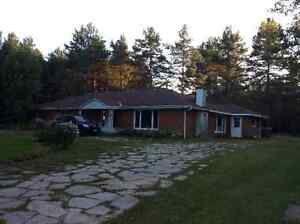 Country Bungalow (9+ acres)