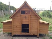Chicken Coop/ Hen house