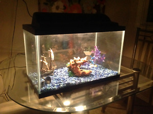 10 Gallon glass Aquarium with  lights and 3 ornaments
