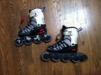 Firefly Adjustable Youth Rollerblades 29-32