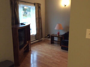 For Rent 3 Bedroom Apartment St. John's Newfoundland image 4