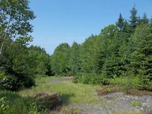 NEW PRICE!  DEVELOP LESS THAN 1/2 HOUR FROM HRM!!