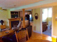 Large one bedroom IR apartment near Angus/bordon