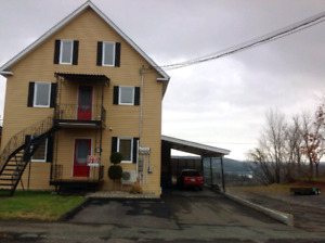 1 Bedroom Apartment Available In Grand-falls, NB