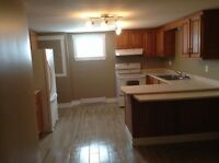 New Maryland- Separate Entrance Apartment (3 mins to Costco)