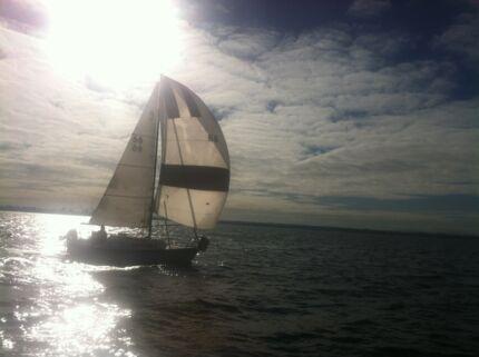 SUNMAID 20 Trailer Sailer Yacht & Trailer Mordialloc Kingston Area Preview